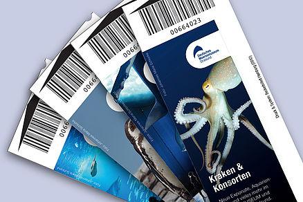 Octopus Lebend Kaufen